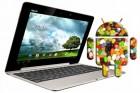 Pour Android 5.0 alias Jelly Bean, c'est Asus qui serait le partenaire de choix !