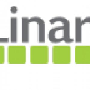 Linaro, ICS 4.0.4 mais en 2 fois plus rapide!