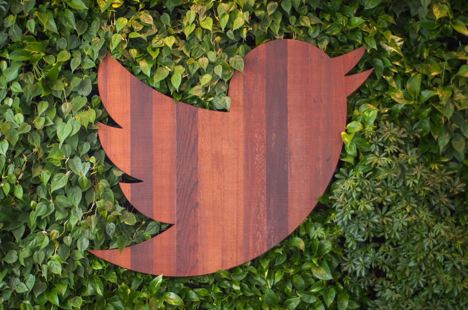 Twitter remplace les étoiles des favoris par des cœurs