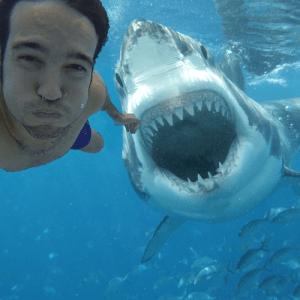 Les selfies ont été plus souvent mortels que les requins en 2015