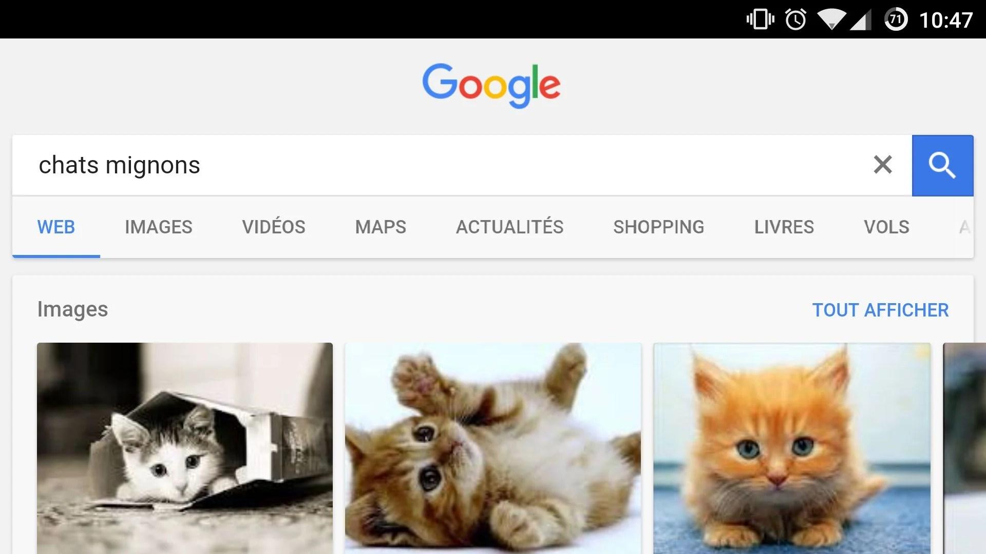 Google Images permet de sauvegarder plus facilement des images de chats mignons