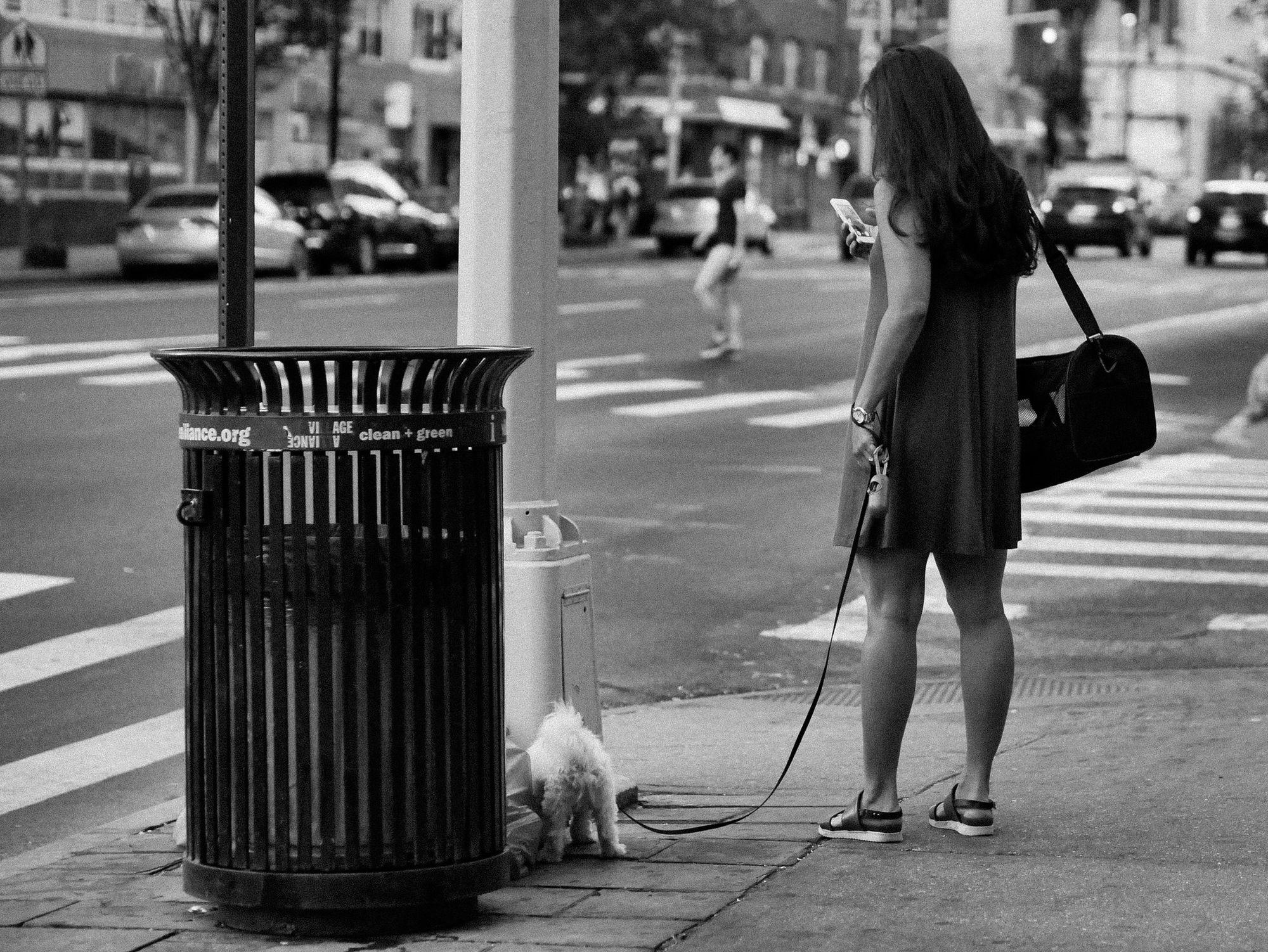 Marcher dans la rue avec son téléphone, c'est risqué