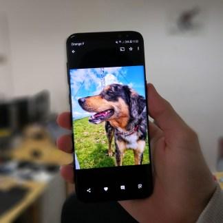 Google Photos se met à son tour au bouton «Like»