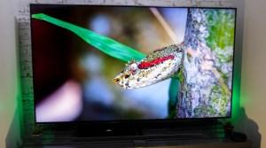 Samsung mise gros sur le QD-OLED et dit au revoir au LCD