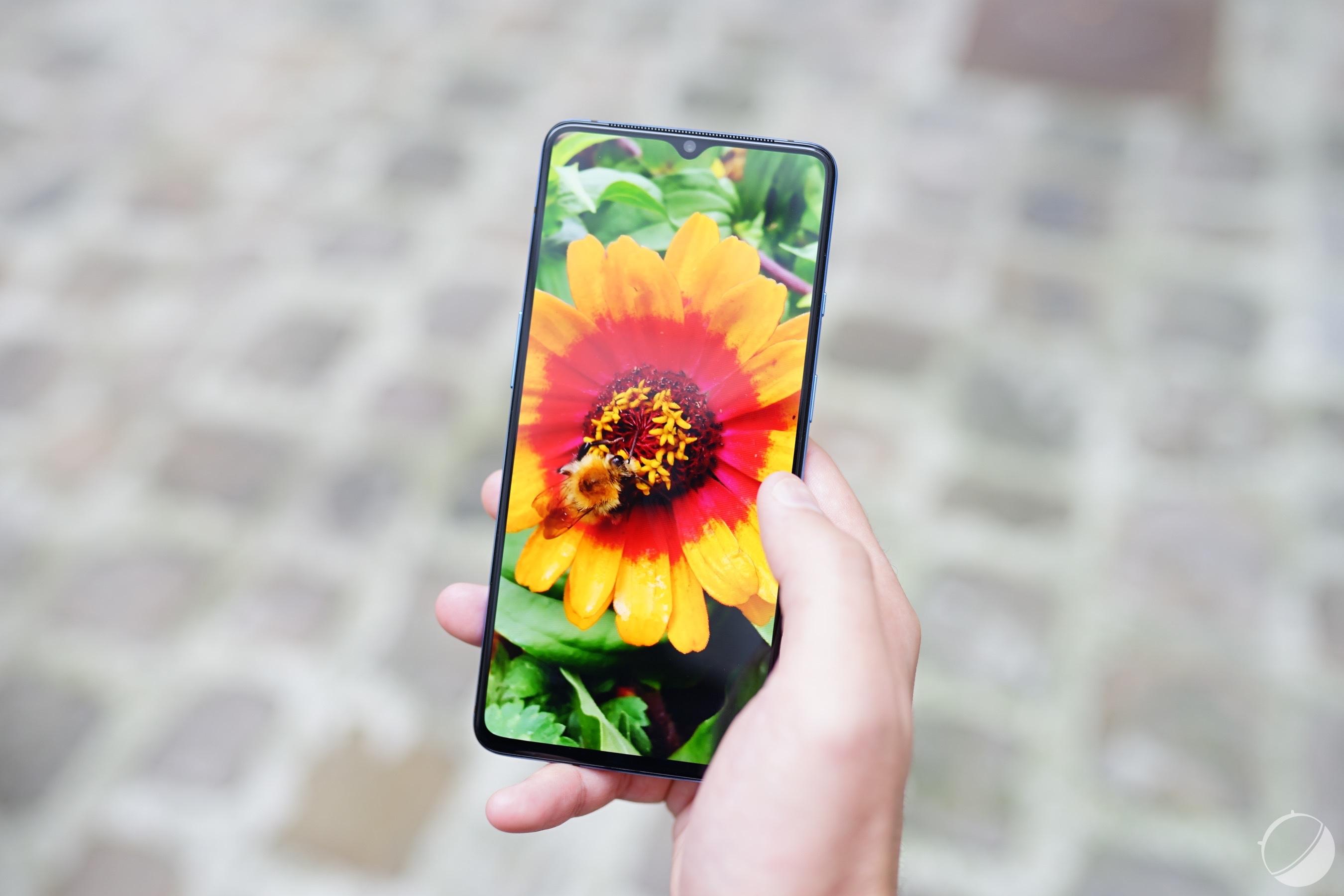 OnePlus 7T, bots sur Mario Kart Tour et Android 10 Go – Tech'spresso