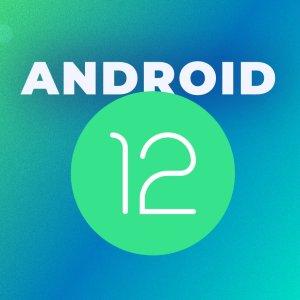 Android 12 : premières images du nouveau thème basé sur votre fond d'écran