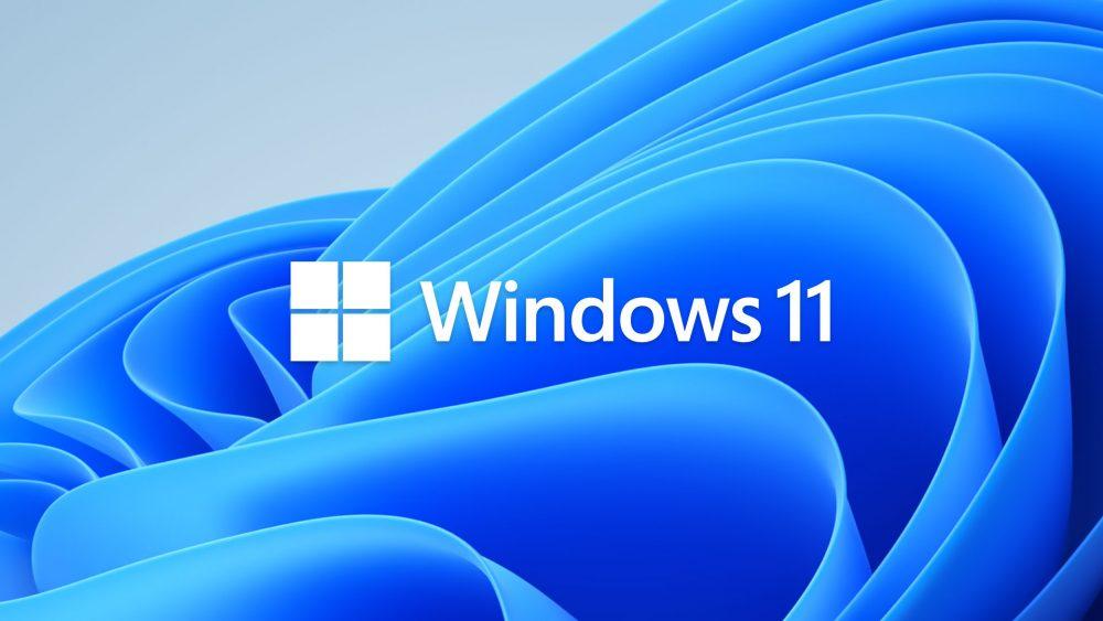 La majorité d'entre vous n'est pas emballée par Windows 11