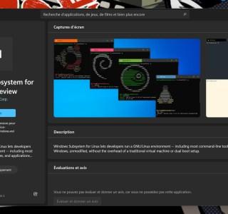 Windows 11 : Linux est désormais aussi simple à installer qu'une application