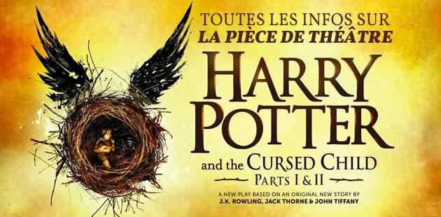 big-harry-potter-cursed-child-piece-theatre-livre