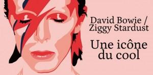 big-david-bowie-ziggy-stardust-icone