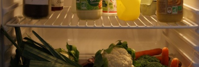 dans-frigo-yelena