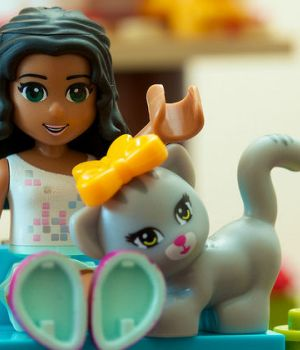 genre-jouets-sociologue