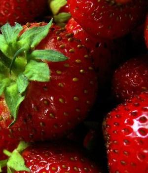 sept-aliments-utile-beaute