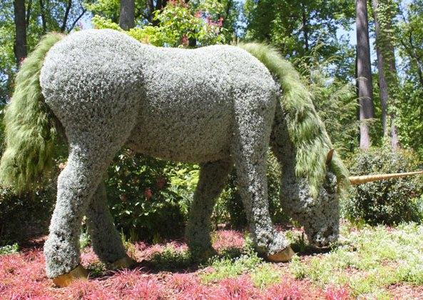 imaginary-world-exposition-botanique-licorne
