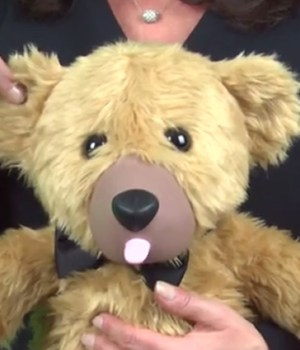 ours-peluche-sex-toy
