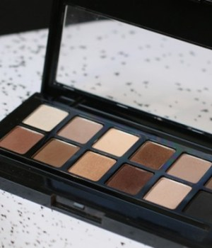 test-palette-the-nudes-gemey-maybelline