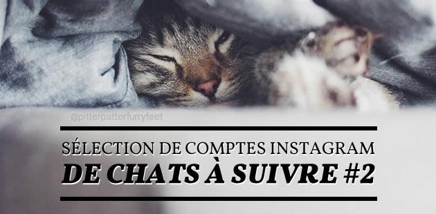 big-comptes-instagram-chats-2