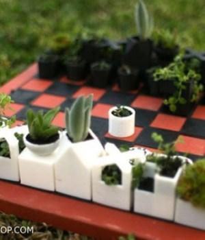jeu-echecs-plantes