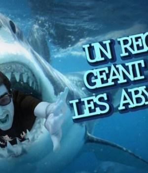 abysses-requin-nozman