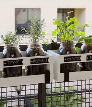 selection-diy-plantes