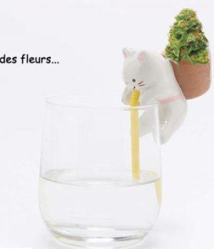 pot-fleurs-chat