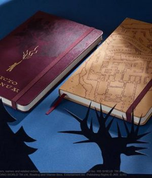 moleskine-carnets-harry-potter