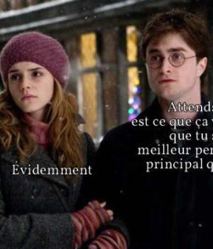 hermione-personnage-principal-harry-potter