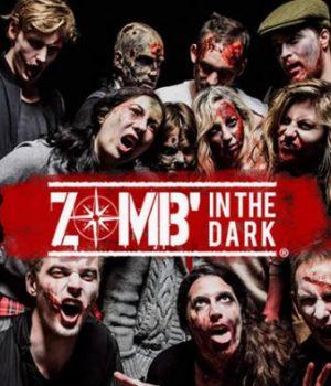zombin-the-dark-inscriptions-2017