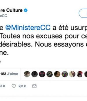 hack-twitter-ministere-culture