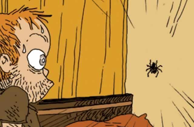 peur-araignee-boulet