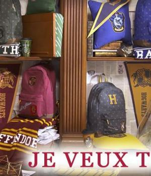 goodies-harry-potter-shopping