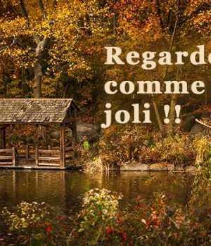 idees-contrer-monotonie-automne