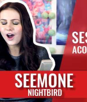 seemone-nightbird