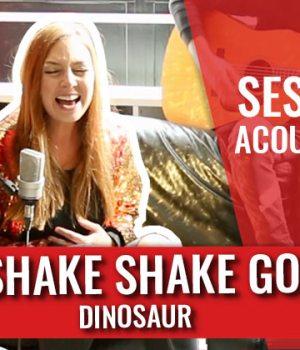 shake-shake-go-dinosaur