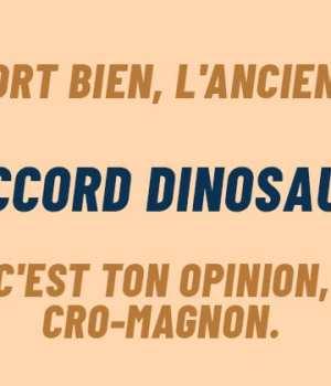 ok-boomer-traduction-francais