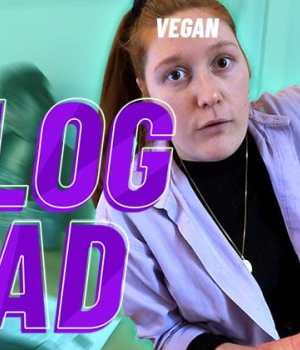 vlogmad-paradoxes