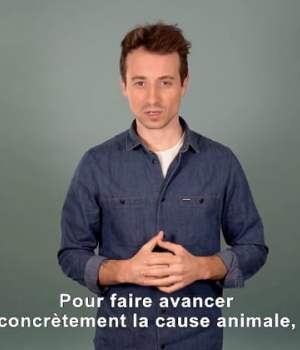 hugo-clement-cause-animale