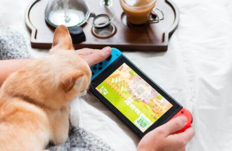 Animal Crossing sur une Nintendo Switch