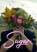sugar nina robert documentaire