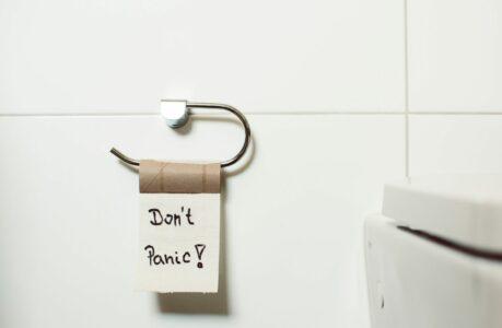 Toilettes_poudre