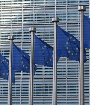 parlement-europeen-vote-ivg