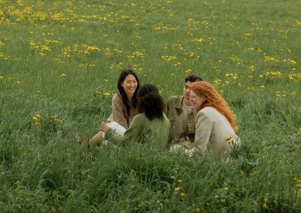 4 personnes assises dans un pré